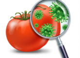 How to distinguish food poisoning from intestinal infection