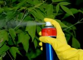 Pesticide poisoning - symptoms and first aid
